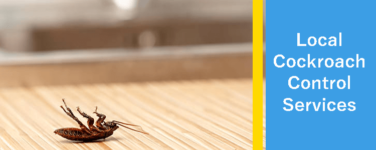 Local Cockroach Control Kardinya