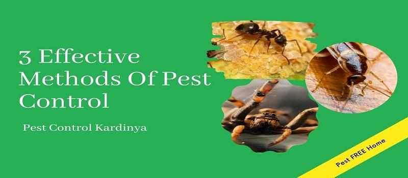 Effective Pest Control Methods Kardinya